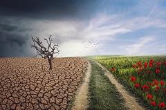milieumikrobekreislauf-240